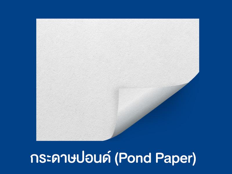 3 ชนิดกระดาษที่นิยมทำถุงกระดาษ และเหมาะกับการนำไปใส่อะไรบ้าง ? - 02
